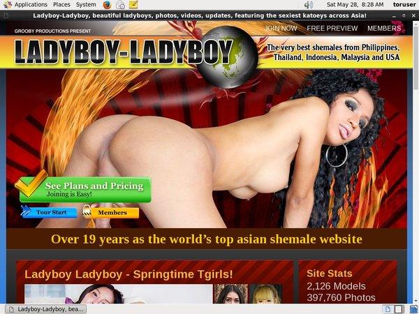 Ladyboy Ladyboy Password Info
