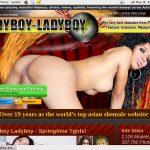 Ladyboyladyboy Desktop