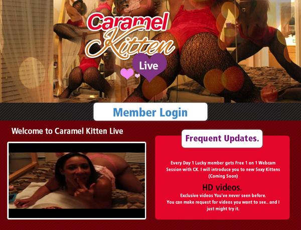 Premium Accounts Free Caramel Kitten Live