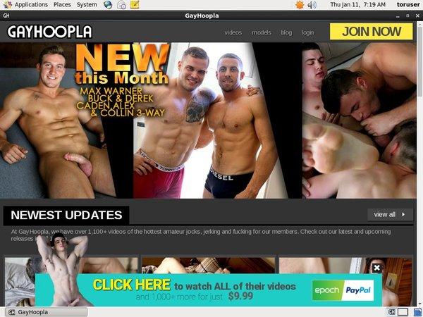Free Gay Hoopla Passwords 2018