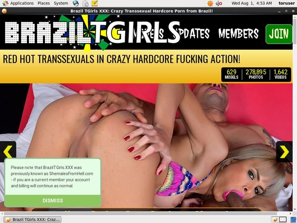 Braziltgirls.xxx Sale Price